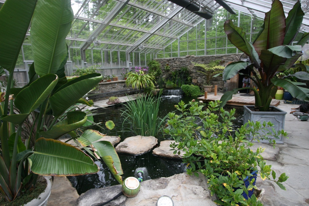 Pbf filters on a private koi pond in upstate new york for Koi new york