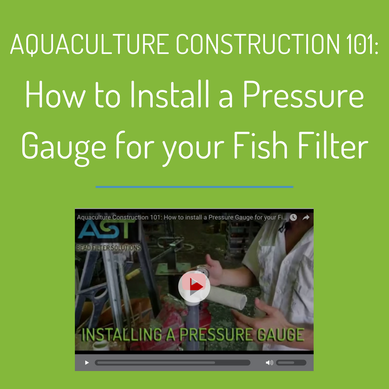 Aquaculture Construction 101: How to Install a Pressure Gauge for Your Fish Filter